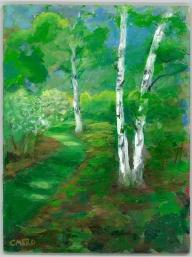 birches, Christine Mero, forest