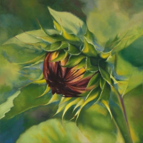 Sunflower7_PattyHayes